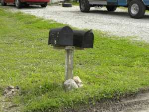 The height of the mailbox should be 42 inches from the street to the bottom of the mailbox. Looks like this one falls a little short!