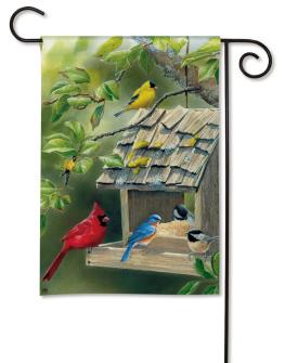 Backyard Feeder by Susan Bourdet