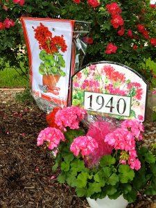 Merchandising | Magnet Works Blog on easter yard designs, yard sign designs, beautiful yard designs, magnet works yard signs, artistic yard designs, christmas yard designs, home yard designs, yard art designs, magnetic yard designs,