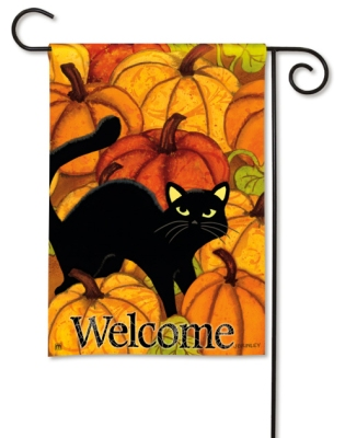 Pumpkin Patch Cat by Jennifer Brinley (#32760)