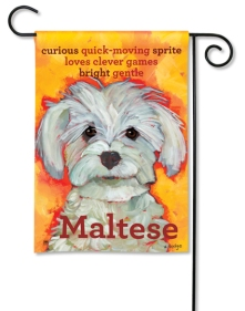 """Maltese"" by Ursula Dodge SKU: 31181"