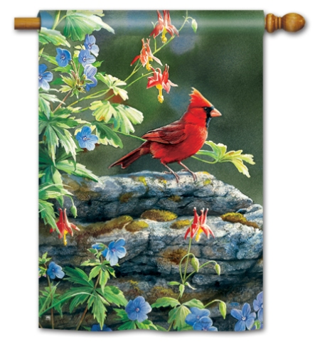 """Cardinal Perch"" by Susan Bourdet SKU: 91127"