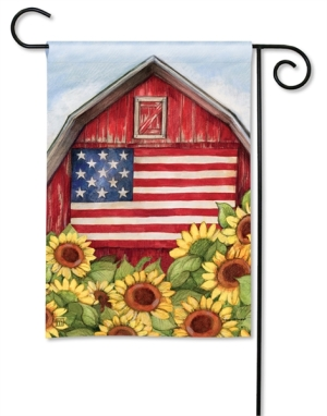 11-31420-Old Glory Barn-Susan Winget